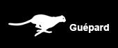 Abonnement GSM Guépard